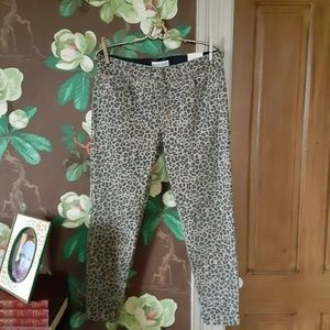 KNOX ROSE Mid Rise Leopard Print Pants